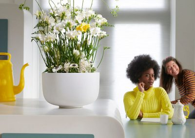 Woonplant freesia-chrysant073LOWRES