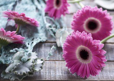 florist_cubinita 3LOWRES