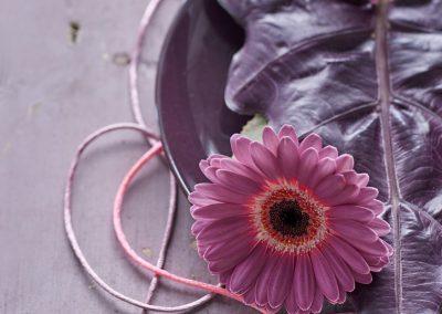 florist_mini_gerbera 3LOWRES