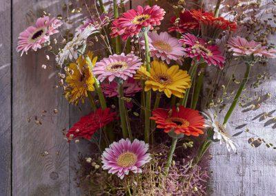 florist_picolini 3LOWRES