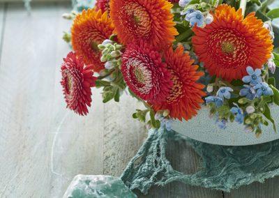 florist_pomponi 2LOWRES