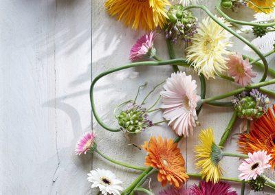 florist_rariteiten 1LOWRES